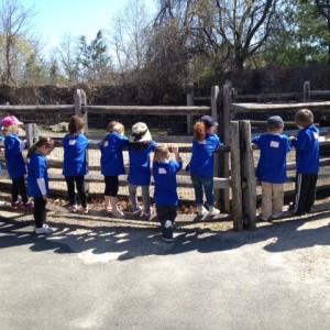 lhbh zoo photo 2014